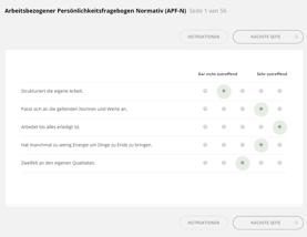 APF-N_stellingen_vragenlijst_afname