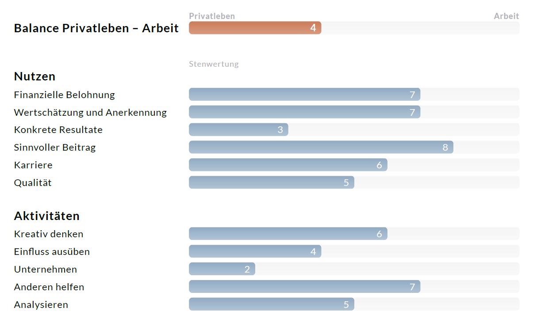Karrierewerte_rapport_grafiek